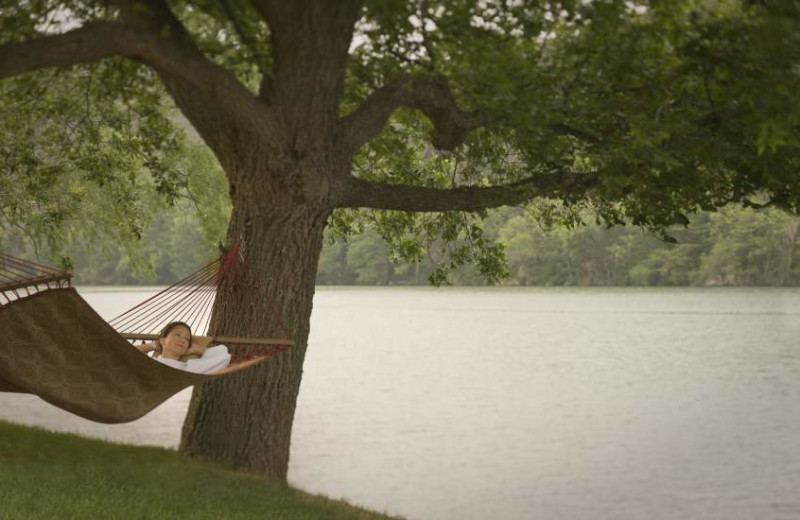 Lakeside Hammocks at Lake Austin Spa Resort
