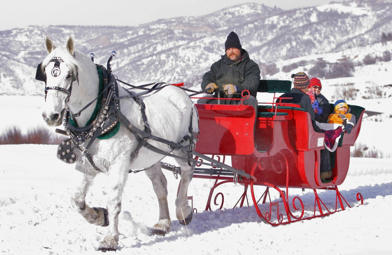 Sleigh ride at The Bella Vista Estate.