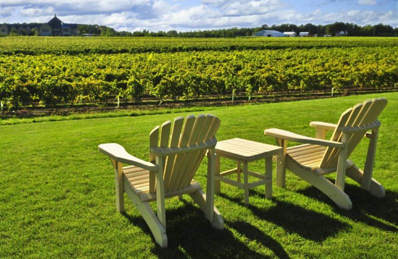 Winery at Vine Ridge Resort.