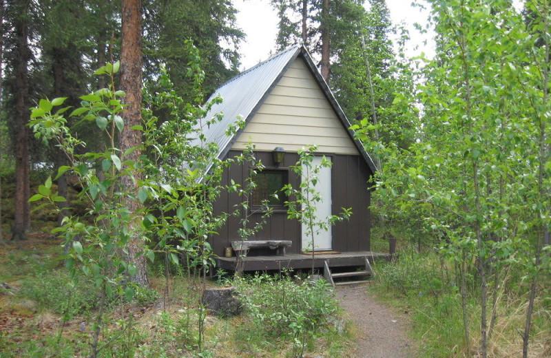 Cabin exterior at Denali Perch Resort.