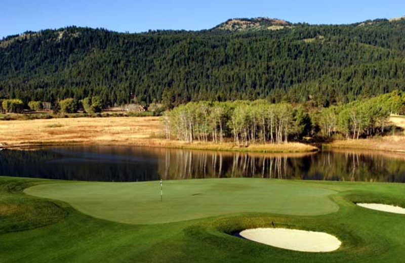 Golf course near The Ashley Inn.