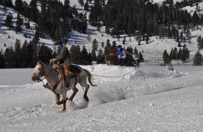 Winter activities a 320 Guest Ranch.