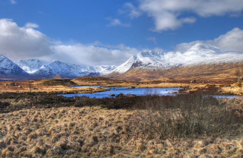 Area surrounding West Highlands.