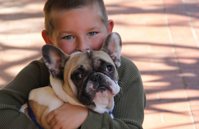 Pets welcome at Obertal Inn & Vacation Rentals.