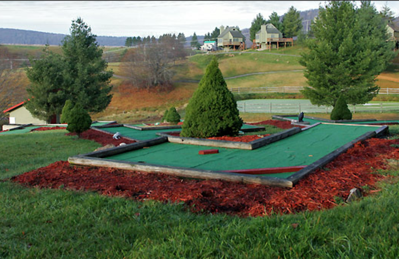 Mini golf at Black Bear Resort Rentals.