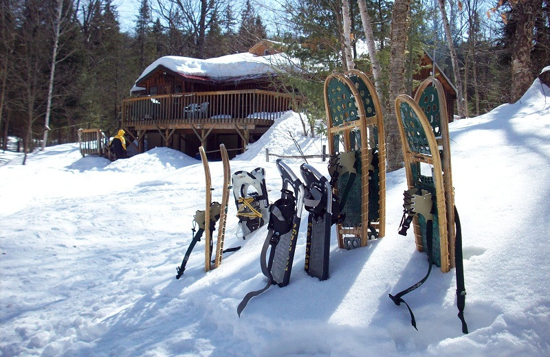 Winter time at Algonquin Eco-Lodge.