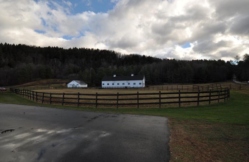 Farm at Three Stallion Inn.