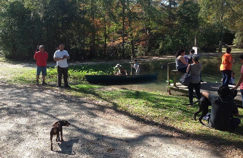 Pets welcome at Berry Creek Cabins.