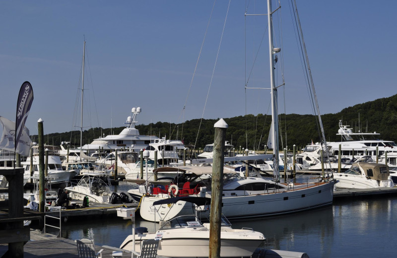 Marina at Danfords on the Sound.