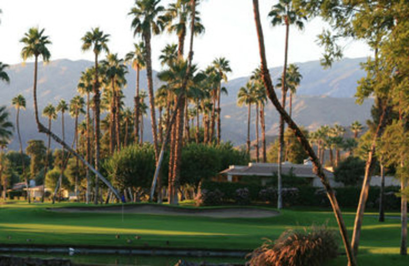 Golf Course View at Rancho Las Palmas Resort