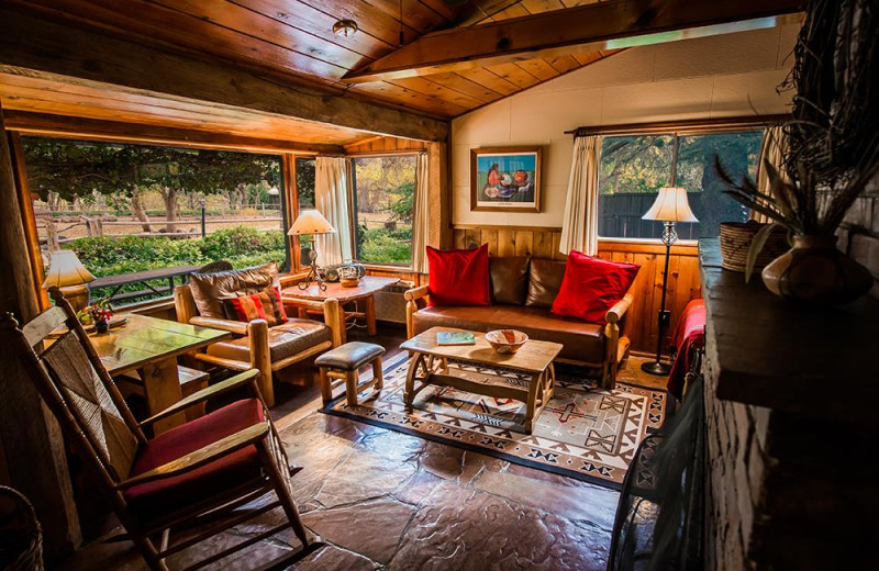 Cabin living room at Briar Patch Inn.