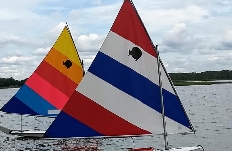 Sail boats at Woodlawn Resort.