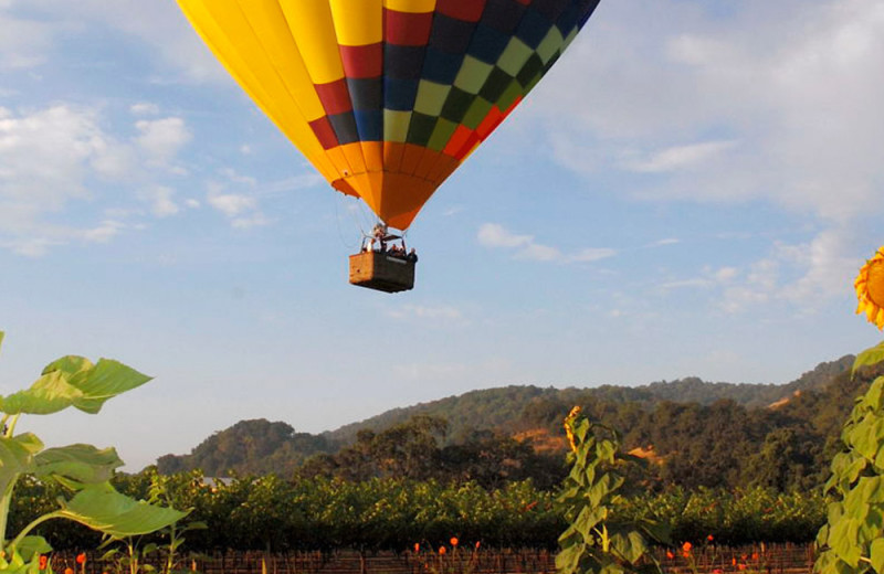 Hot air balloon rides near Harvest Inn by Charlie Palmer.