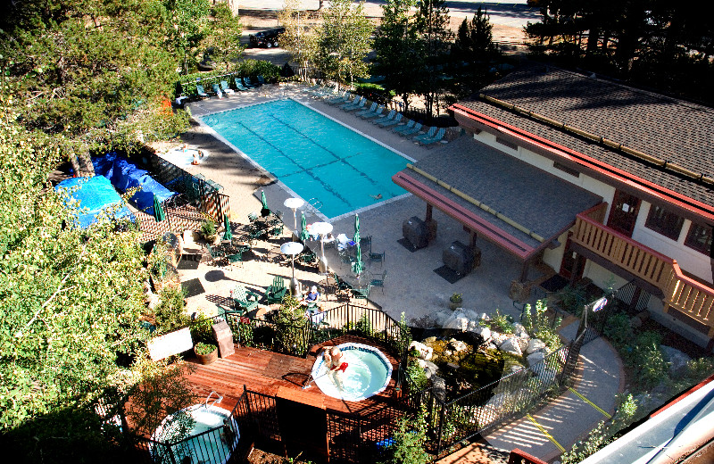 Aerial view of the pool at Olympic Village Inn.
