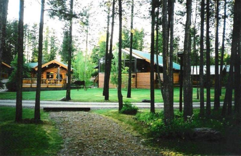 Cabins at Silverwolf Log Chalet Resort.