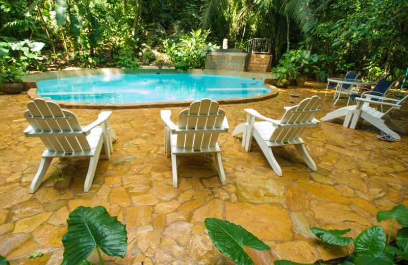 Pool at Jaguar Paw Resort.