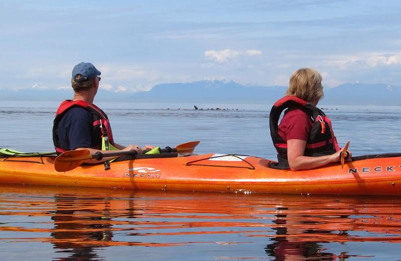 Kayaking at Blue Vista Resort.