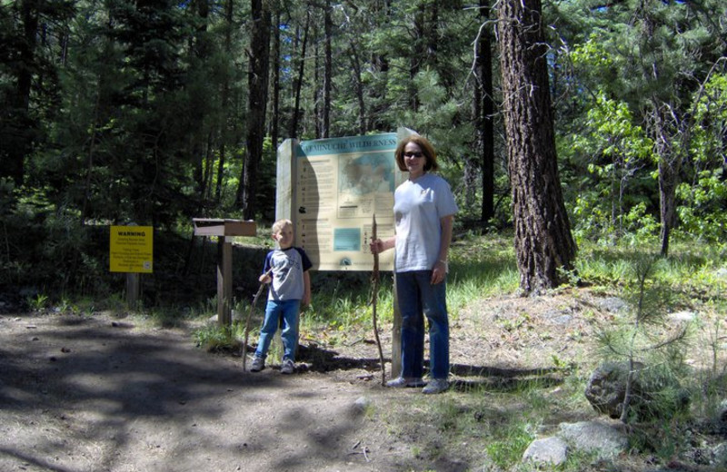 Family hiking at Lone Wolf Cabins and Getaway.
