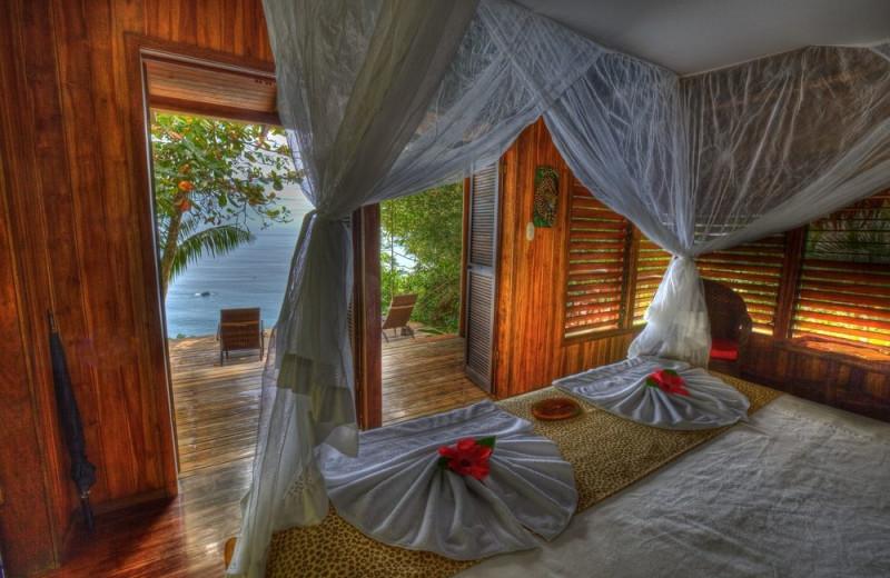 Guest room at Bosque del Cabo.