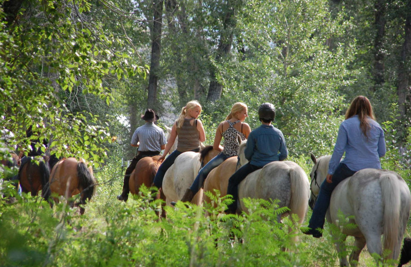 Horseback riding at Rocking Z Ranch.