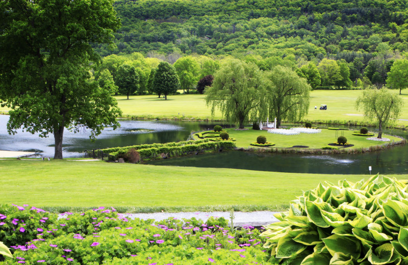 Wellness Island at Honor's Haven Retreat & Conference