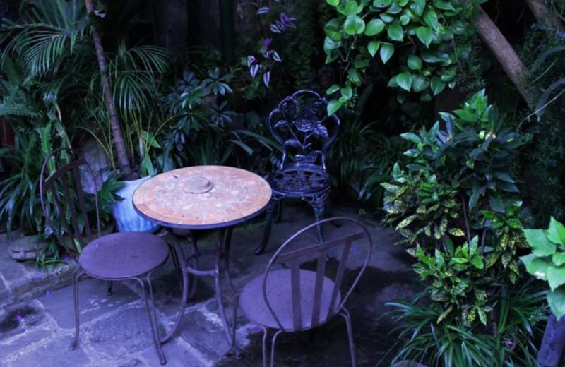 Patio at Posada Belen Hotel Museum.