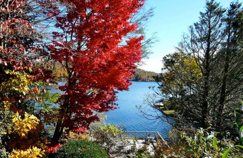Fall at The Greystone Inn.