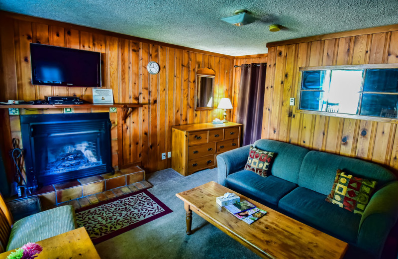 Cabin living room at Bonnie View Inn.