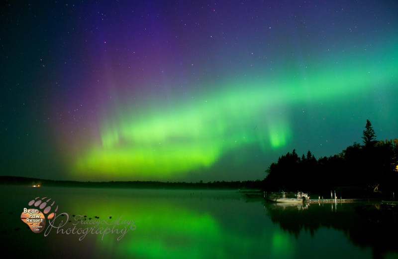 Breathtaking Northern Lights can be seen here along with the amazing starry skies. No city lights.