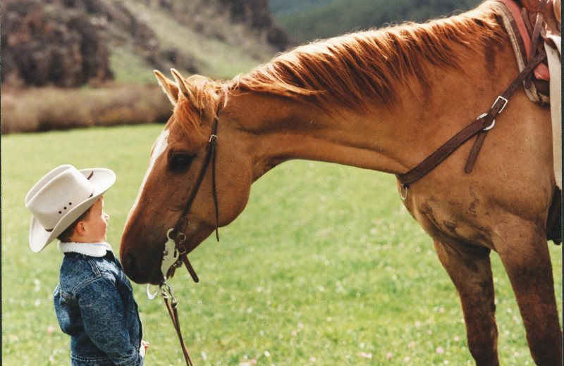 Horse and child at Paradise Guest Ranch.