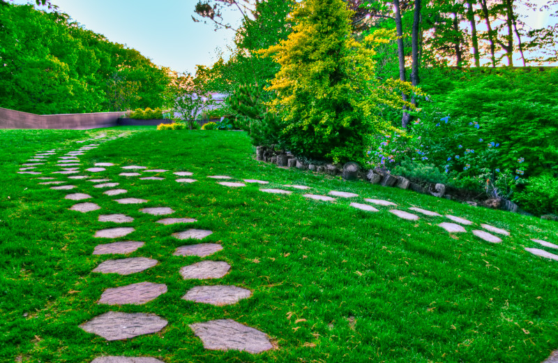Stone path in the courtyard at Ascend Hotel Collection-The Woodlands.