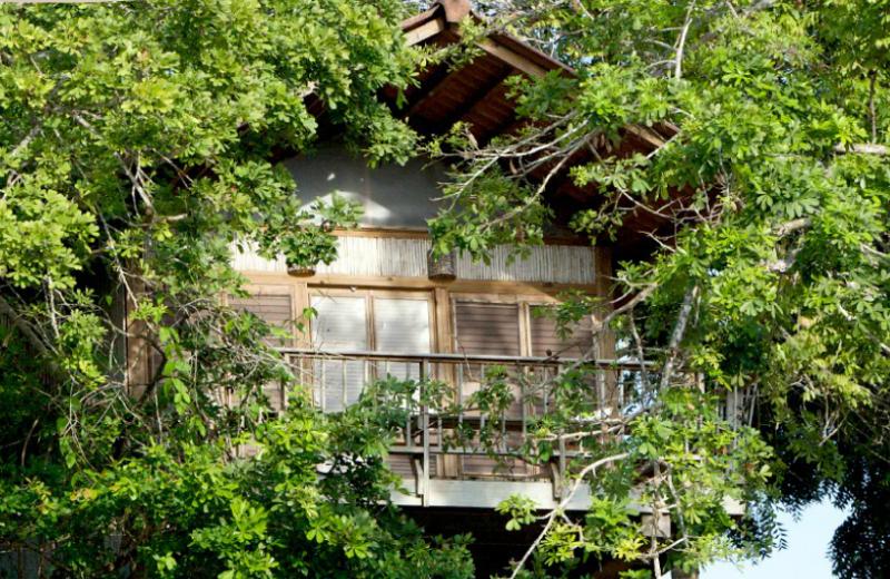 Exterior view of Hacienda del Mar Private Island Resort, Panama.