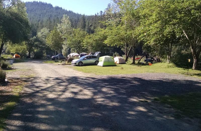 Giant Redwoods Rv Park Amp Camp Myers Flat Ca Resort