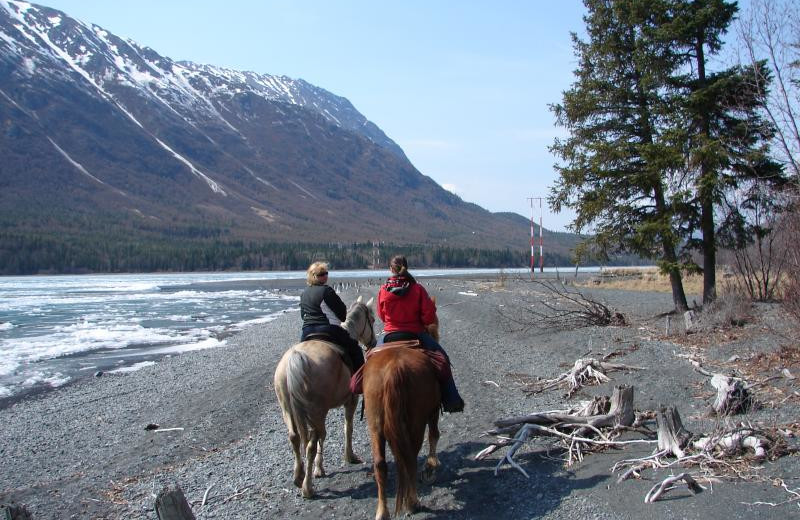 Horseback riding at Summit Lake Lodge.