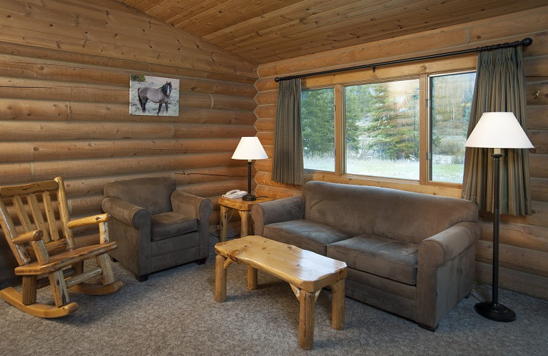 Cabin living room at 320 Guest Ranch.