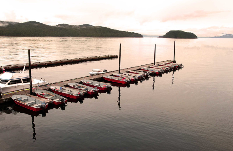 Boats at dock at Salmon Falls Resort.