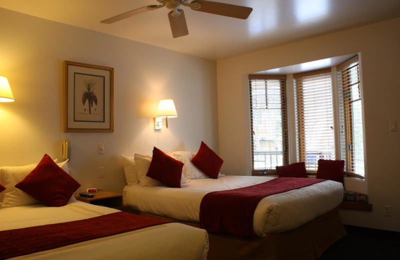 Guest room at St. Moritz Lodge & Condominiums.