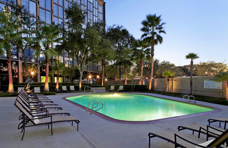 Outdoor Pool at the Sheraton Brookhollow Hotel Near the Galleria
