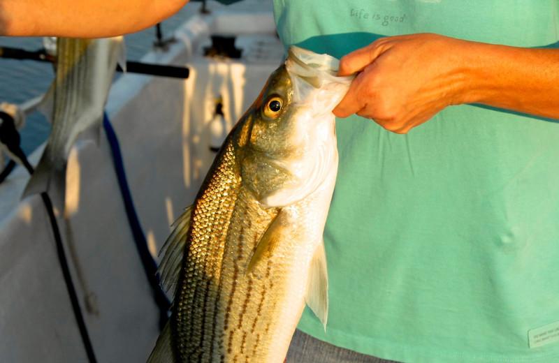 Fishing at Big Chief RV Resort.