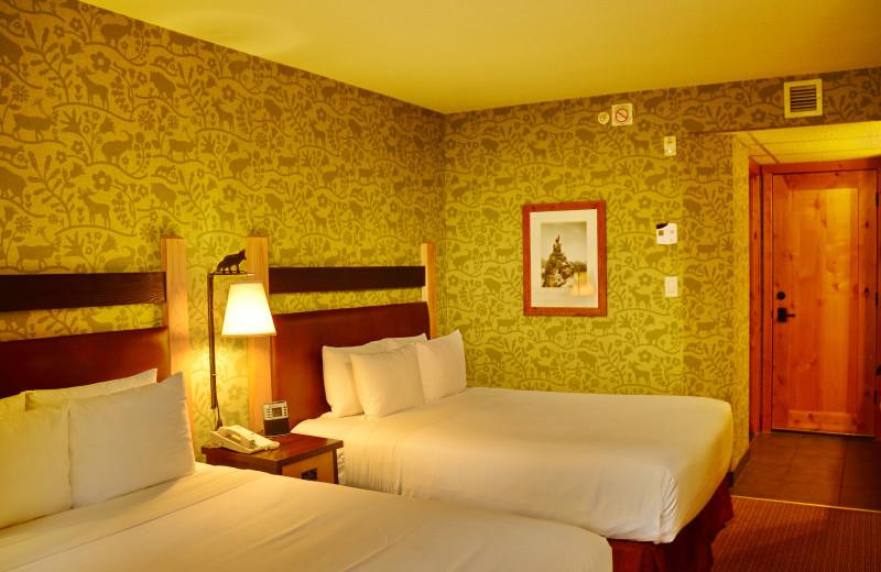 Standard Hotel Room - 2 Doubles