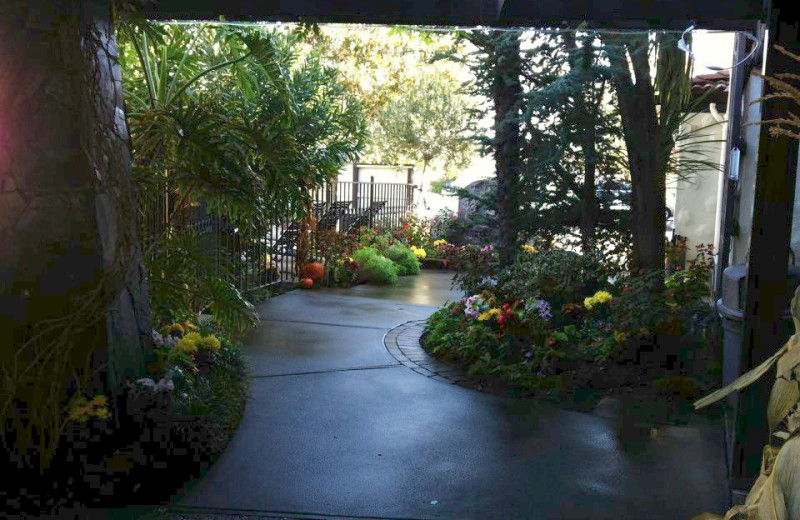 Garden pathway at Roman Spa Hot Springs Resort.