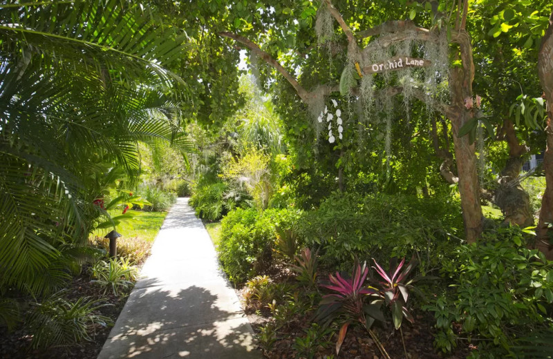 Path at 1800 Atlantic, All Florida Keys Property Management.