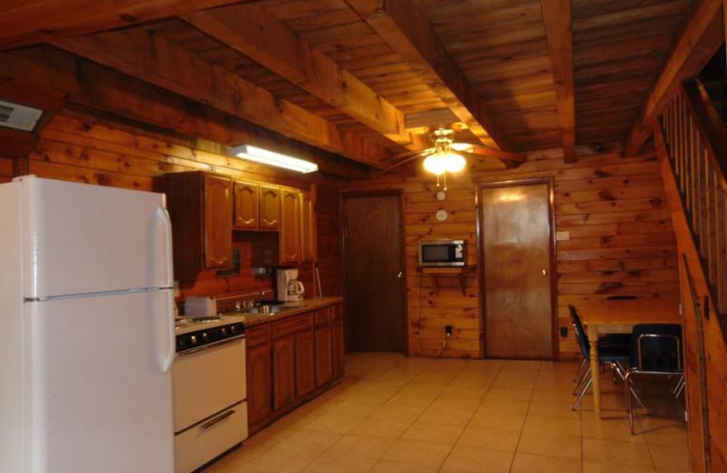 Cabin kitchen at The Depe Dene Resort.