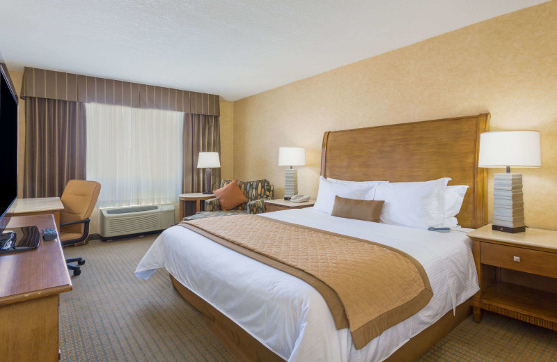 Guest room at Wyndham Garden Phoenix Midtown.