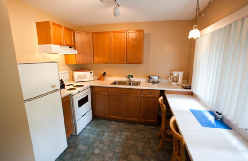 Studio kitchen at Blue Spruce Resort.