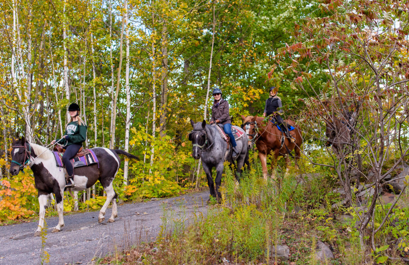 Horseback riding at Deerhurst Resort.