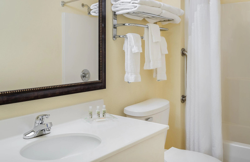 Guest bathroom at Holiday Inn Minneapolis NW Elk River & Wild Woods Waterpark.