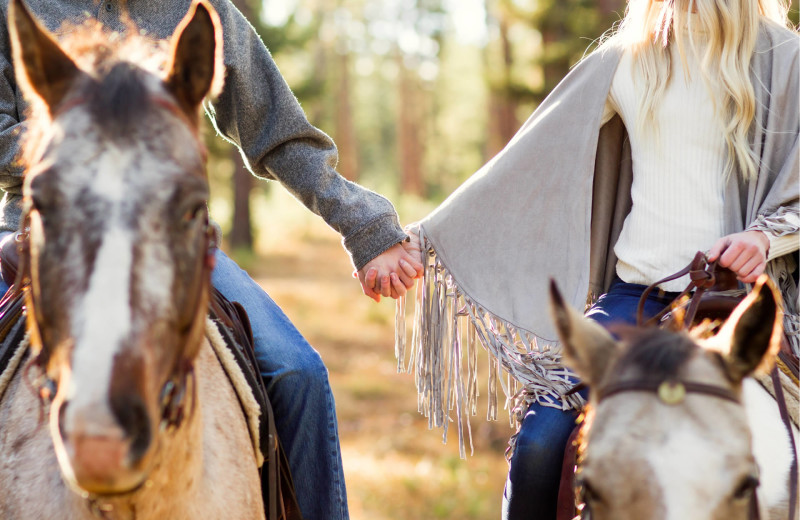 Couple holding hands on horseback at The Green O.