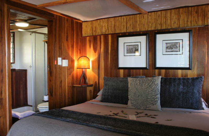 Guest room at Impalila Island Lodge.