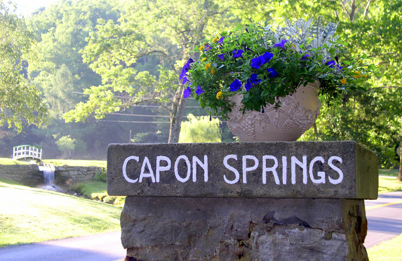 Welcome to Capon Springs.